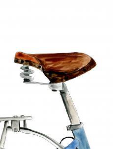 Bicycle seat.jpg