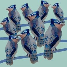 Uccellini birds sitting on a wire.jpg