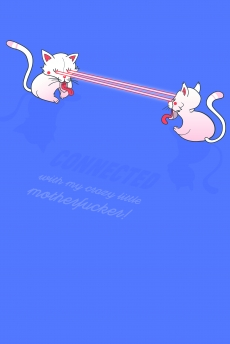 crazy chinese cats are connected throught the light.jpg