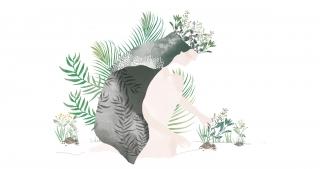 Queen of plants.jpg