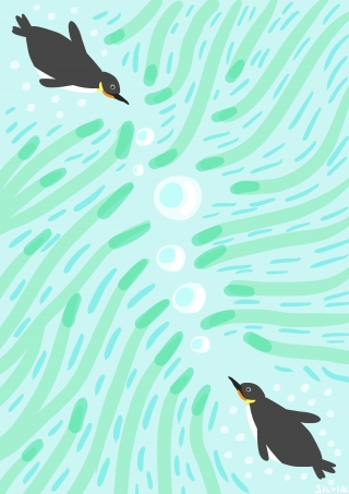 Penguins Under Water