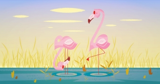 Two pink flamingos.jpg