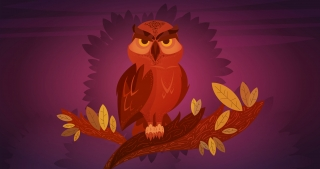 Owl sitting at night.jpg