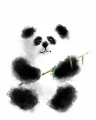 Fluffy panda eats bamboo's branch