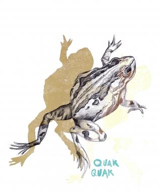 Frog with lettering quak quak