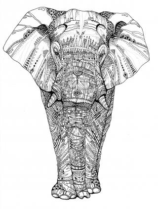 ElefantRZ