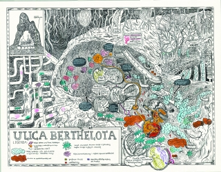 The Berthelota street. Illustration to the book of Stefan Themerson..jpg