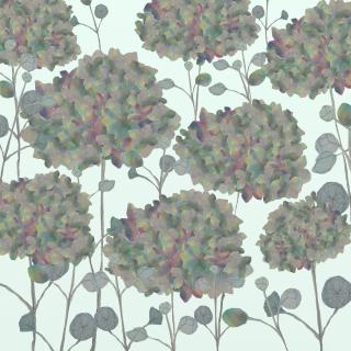 Green hortensia flowers.jpg
