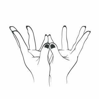 yoga mudra lotus