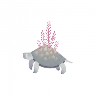 Tortoise with plants.jpg