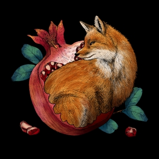 Fox and pomegranate