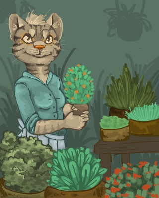 Cat with herbs