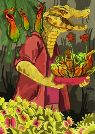 Crocodile and his plants.png