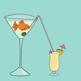 Goldi gold fish drinking drink from a glass.jpg