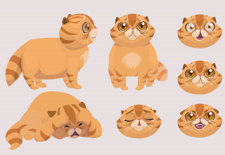 Scaredy cat character sheet.