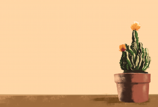 Cactus with yellow flowers in the pot .png