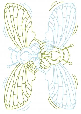 Flys in Love.jpg