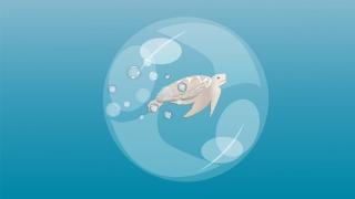 Turtle in a sea bubble