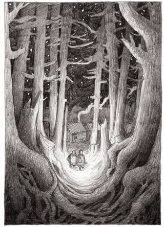 Two people wandering through a forest at night