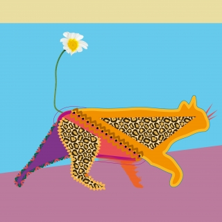 Colorful cat who sees himself as a leopard