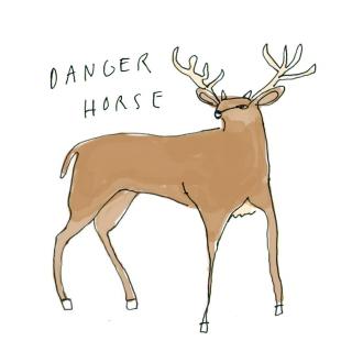 PW Danger-Horse_945.jpg