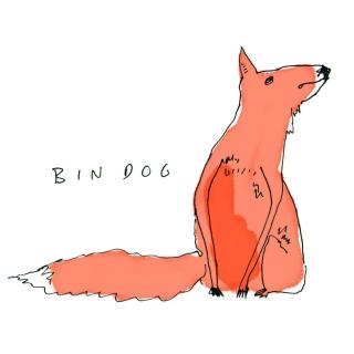 PW Bin-Dog_945.jpg