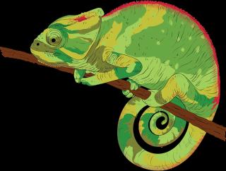 Chameleon .png
