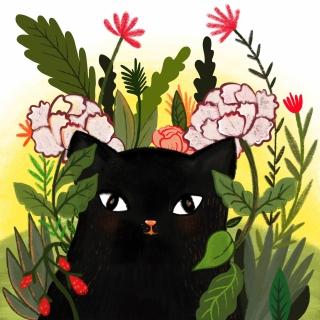 Kitty_1.jpg