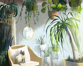 Cat sitting inside green house