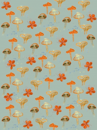 Muster verschiedene Sorten Pilze # different mushrooms pattern