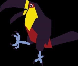 Dancing toucan