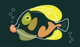 Yellow fish.jpg