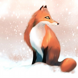Fox in the winter
