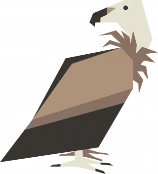 Griffon Vulture Bird Vector Artwork