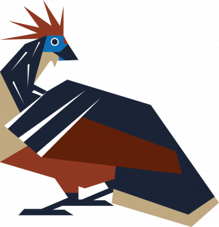 Feather bird hoatzin.png