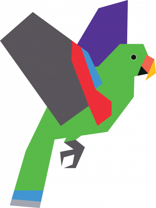 Male Eclectus Parrot Vector Artwork