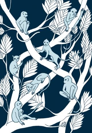 Illustration for book Arabian Mythology.jpg