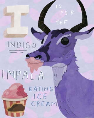Impala eating Ice-cream