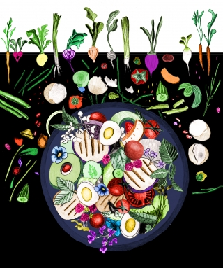 A healthy colourful salad bowl. The leftovers from preparation help with growing new foods by composting..jpg