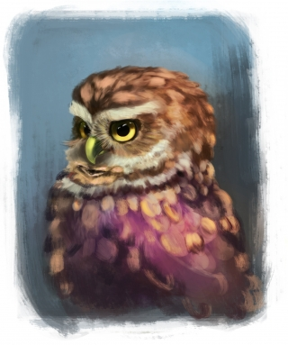 Serious Owl.jpg
