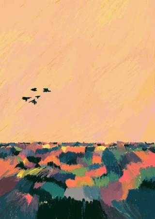 6 uccelli.jpg