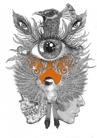 Eye in a skull