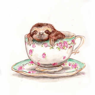 Sloth in the cup