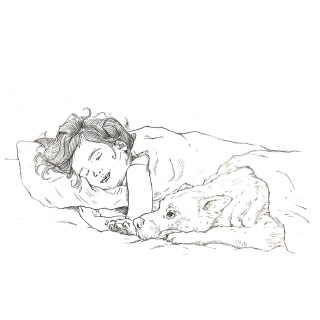 Sleeping child with dog under the blanket
