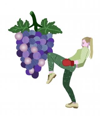 GrapeBoxer.jpg