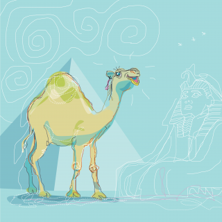 camel Egypt.png