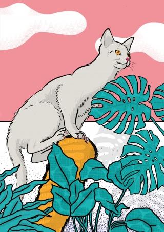 my-cat-the-jungle-explorer-illustration.jpg