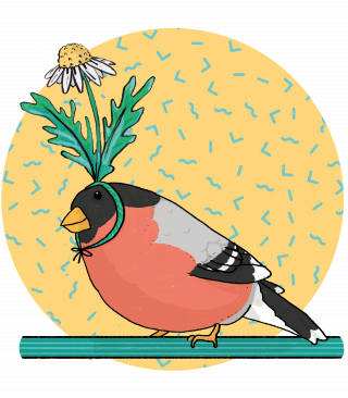 Bird of a feather funny cute illustration of a robi bird using a daisy as hat on pastel backgroun with memphis pattern.png