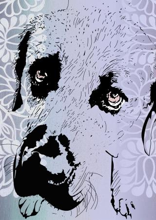 portrait_of_dog_slavic_pattern