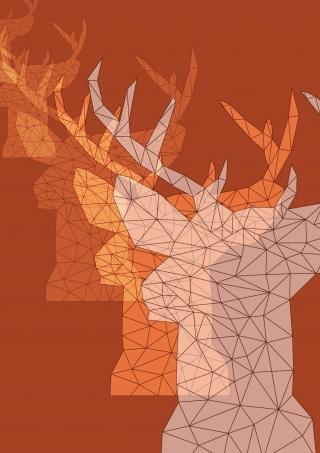 dear_deers